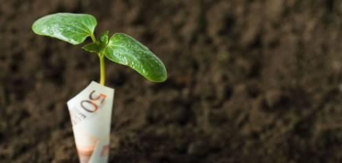 Offerte di finanziamenti online for Finanziamenti online