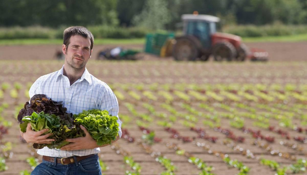 Finanziamenti a Start Up Agricole 3