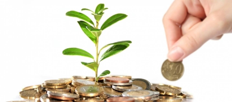 Finanziamenti a Fondo Perduto Agricoltura