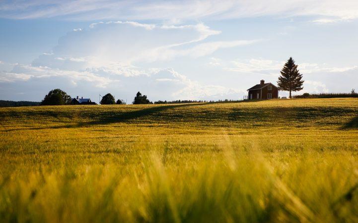 Come ipotecare un terreno